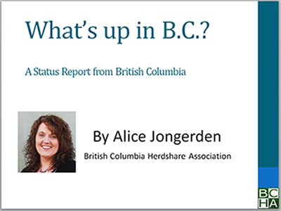 BC-status-report image