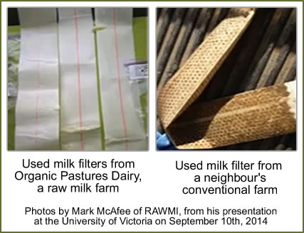 milk-filters